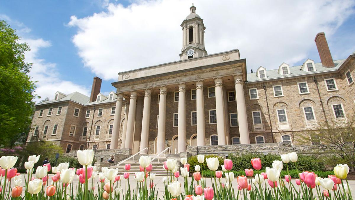 This is a photography of Old Main, Penn State's administration building, with pink and white tulips in the foreground.