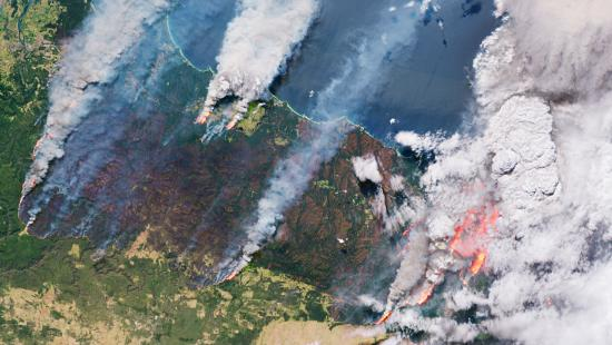 This satellite photo from the European Space Agency shows wildfires burning on the east coast of Australia