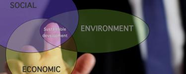 sustainability-mgmt-policy-certificate.jpg