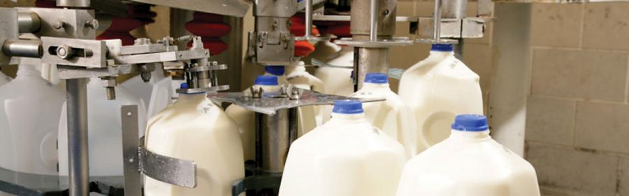 Milk-Bottling-1.jpg